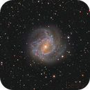Messier 83 ,                                Leslie Rose