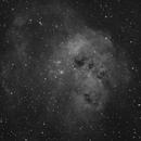 IC410 H-alpha,                                guillau012