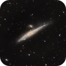 NGC 4631 and NGC 4627 or ARP 281 called the Whale,                                Riedl Rudolf