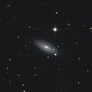 NGC 2841,                                Matti Hietanen