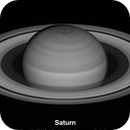 The changing aspect of Saturn's rings over 8 months,                                Niall MacNeill
