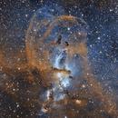 Statue of Liberty Nebula, SHO, crop,                                Scott M. Stirling