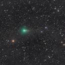C/2019 Y1 ATLAS - 26.04.2020,                                Nippo81