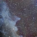 IC 2118 - The Witch Nebula,                                Luis Martinez