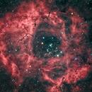 Rosette Nebula,                                Adriano