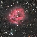 IC5146 Cocoon Nebula,                                Jim Davis