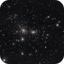 Abell 1656 - the Coma Galaxy Cluster,                                pete_xl