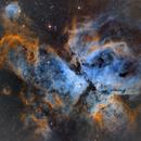 NGC 3372 The Carina Nebula,                                Matthew Sole