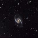 NGC 1365,                                Leslie Rose