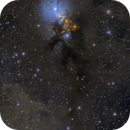 NGC1333 Reflection Nebula in Perseus,                                Masahiro Takahashi