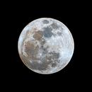 Blue Moon,                                Joshua Carter
