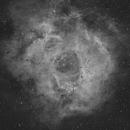 Nebuleuse de la rosette Caldwell 49,                                LAMAGAT Frederic