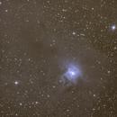 La nébuleuse de l'iris (NGC7023),                                pam-pg