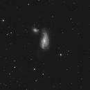 NGC 4490 - Cocoon-Galaxy - L-Only,                                Jonas Illner