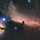 Horsehead and Flame Nebulae (2011),                                Kirk