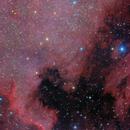 NGC7000,                                Дмитрий