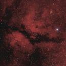 Sadr Region H-Alpha/RGB,                                Joschi