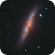 The Cigar Galaxy,                                Nikolay Vdovin