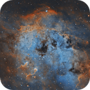 Tadpoles Nebula,                                Ioan Popa