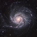 M101,                                Tom Harrison