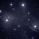 M45 Pleiades (Detail),                                Michael Southam