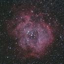 Rosette Nebula,                                Julien Lana