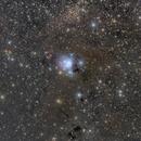 The Cosmic Rosebud,                                Eric Coles (coles44)