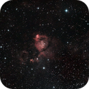 IC 1795 (Fish Head),                                Michael
