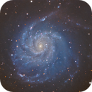 M101 from the city - combination of my data and the data of Luben G. Georgiev,                                Sektor