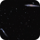 ngc4631 & ngc4656 (blue whale and hockey stick galaxies) LRGB,                                *philippe Gilberton