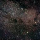 Sagittarius Star Cloud,                                David Johnson