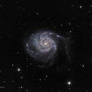 Pinwheel Galaxy (M101),                                Hassan Abdollahabadi