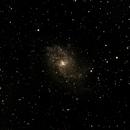 M33,                                Steven Powell