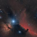 Around Alnitak - Horsehead- & Flame Nebula,                                Falk Schiel