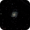 M101,                                Alessandro Curci