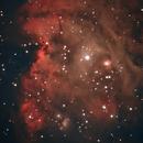 NGC2174 Monkey Head Nebula,                                francopanetta