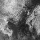 NGC 7000 Region,                                John Gleason