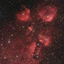 NGC6334 The Cat's Paw Nebula,                                Nicholas Jones