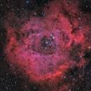 NGC2237 HaLRGB,                                Sergiy_Vakulenko
