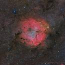 IC 1396 Widefield Hybrid Image,                                Paddy Gilliland