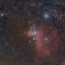 M78 + Horsehead,                                Andreas Max Böckle