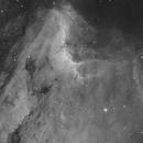 Pelican Nebula,                                apaquette