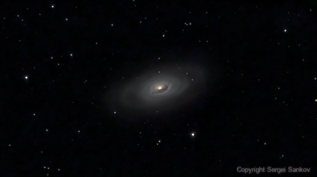 M64. The Black Eye Galaxy,                                Sergei Sankov