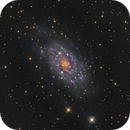 NGC 2403 : Combined Data,                                Mike Kline