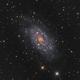 NGC 2403 : Combined Data,                                Mike Kline