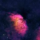 Tulip Nebula in HOS with Ha Lum,                                Rob Fink