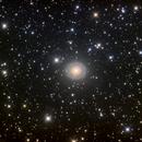 NGC 7217,                                Colin McGill