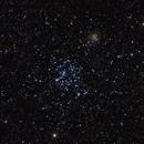 M35 Shoe-Buckle Cluster,                                YC Lim