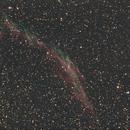 Eastern Veil NGC 6995,                                Tam Rich