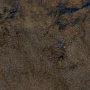 M7 in a golden Starfield,                                Florian_Neumann-Pieper